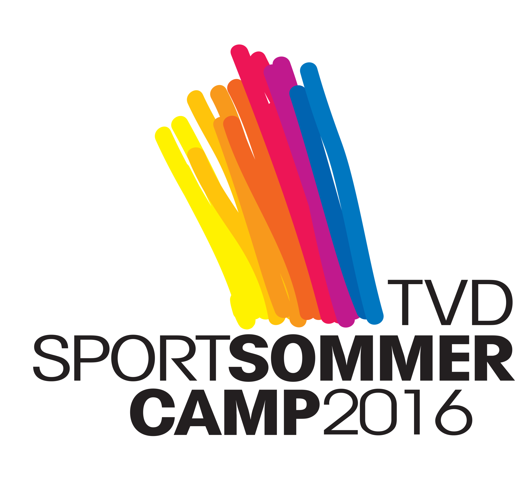 flyer-tvd-sommercamp-2016_1a